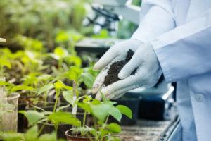Регистрация агрохимикатов и пестицидов в Украине - zigma.com.ua/sertifikatsiya-pestitsidov-i-agrohimikatov/