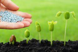 Сертификация пестицидов и агрохимикатов - zigma.com.ua/sertifikatsiya-pestitsidov-i-agrohimikatov/